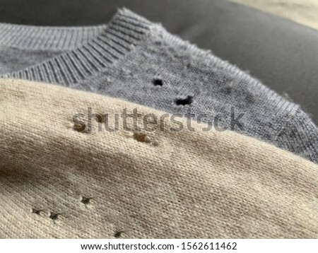 Two expensive cashmere sweaters with holes and damaged, caused by cloth moths (Tineola bisselliella). Selective focus #1562611462