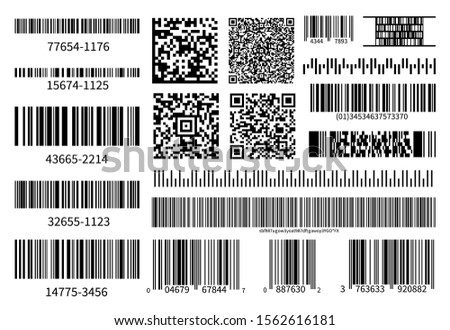 Barcodes collection. Vector code information, QR, store scan codes. Industrial coding information