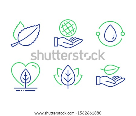 Safe planet, Mint leaves and Local grown line icons set. Cold-pressed oil, Organic tested and Leaf signs. Ecology, Mentha herbal, Organic tested. Bio ingredients. Nature set. Vector #1562661880