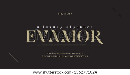 Elegant luxury alphabet letters font and number. Classic Lettering Minimal Fashion Designs. Typography fonts regular uppercase and lowercase. vector illustration Royalty-Free Stock Photo #1562791024