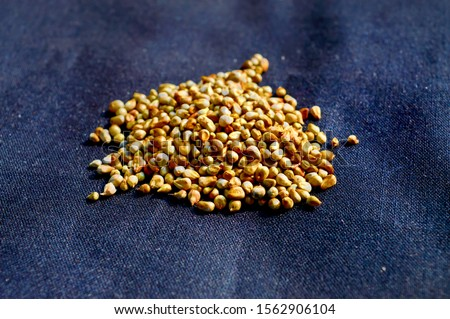 Whole grains, which are healthy food,Millet grain on black background,bajra grain on black background #1562906104
