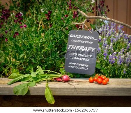 Sign in garden, Gardening cheaper than therapy and you get tomatoes (and flowers and radish, green therapy getting back to nature concept