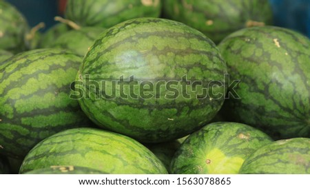 Watermelon is grown in tropical and subtropical areas worldwide for its large edible fruit. #1563078865