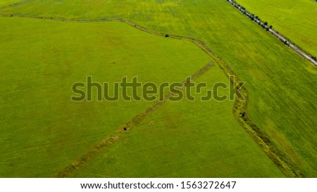Summer view on the field near Gatchina city #1563272647
