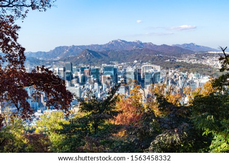SEOUL, SOUTH KOREA, NOVEMBER 4, 2019: trees in Namsan park on Nam mount and above view of Seoul city on sunny autumn day. Seoul Special City is the capital and largest metropolis of South Korea #1563458332
