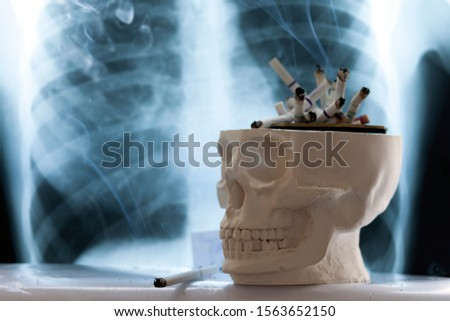 concept of the dangers of smoking cigarettes, the danger of cigarette smoke to humans, copy space #1563652150