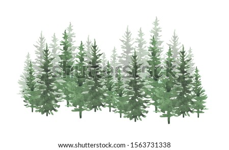 Hand drawn watercolor coniferous forest illustration, spruce. Winter nature, holiday background, conifer, snow, outdoor, snowy rural landscape.Mysterious fir or pine trees for winter Christmas design Royalty-Free Stock Photo #1563731338