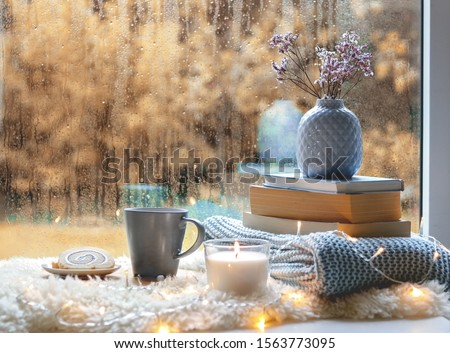 Cozy home still life. Cup of tea with sweet dessert, candle, books, flowers in blue vase and garland lights at wet autumn window against fall garden. Relaxing at cold season at home. Copy space #1563773095