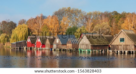 Wooden boathouses at lake Muritz (Müritz) near Robel (Röbel) with trees in autumn foliage in Mecklenburg-Vorpommern, Germany. Autumn landscape. With Eurasian coots in front of the boathouses. #1563828403
