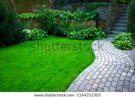 Garden stone path with grass growing up between the stones.Detail of a botanical garden. #1564252303