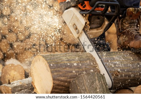 Chainsaw in action cutting wood. Man cutting wood with saw, dust and movements. Chainsaw. Close-up of woodcutter sawing chain saw in motion, sawdust fly to sides. #1564420561