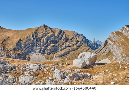 Rocky mountains covered with autumn meadow against the blue sky #1564580440