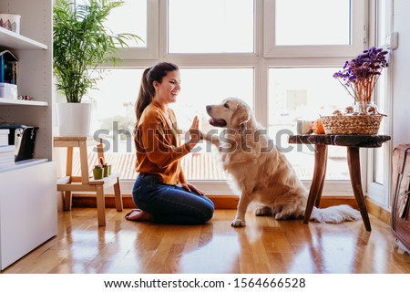 beautiful woman doing high five her adorable golden retriever dog at home. love for animals concept. lifestyle indoors #1564666528