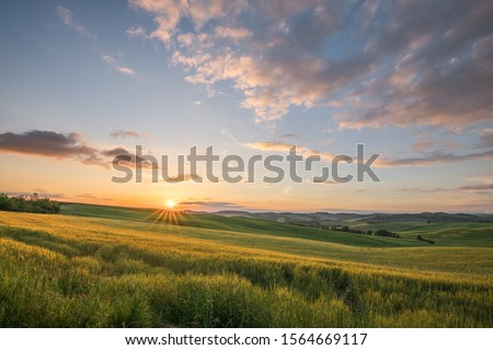 Sunset landscapes over the green grassland and rolling hills in Tuscany #1564669117