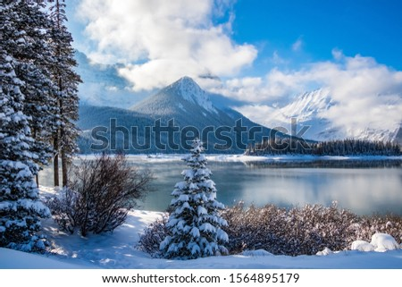 Landscaper view of a snowy shoreline against an unfrozen cold steamy lake with mountains in the background on a sunny day. #1564895179