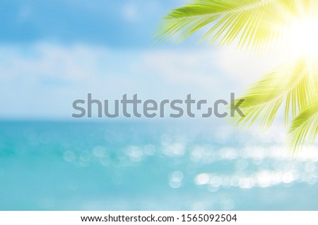 Blur beautiful nature green palm leaf on tropical beach with bokeh sun light wave abstract background. Copy space of summer vacation and business travel concept. Vintage tone filter effect color style #1565092504