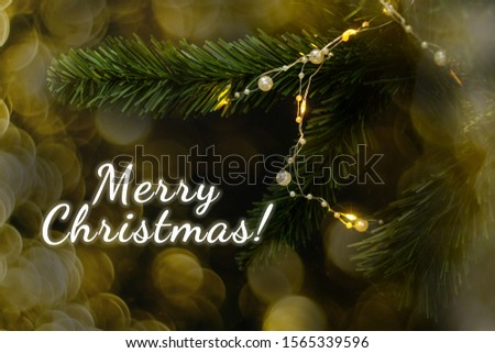 Fir branch with garland and Merry Christmas. #1565339596