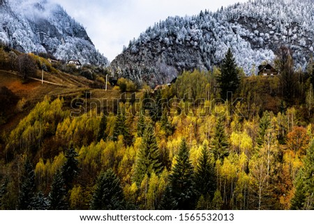 Autumn alpine landscape, alpine village with spectacular gardens and high snowy mountains in background near Bran, Magura, Transylvania, Romania. #1565532013