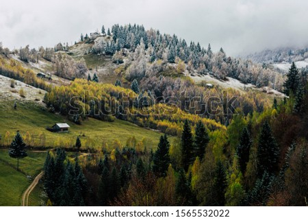 Autumn alpine landscape, alpine village with spectacular gardens and high snowy mountains in background near Bran, Magura, Transylvania, Romania. #1565532022