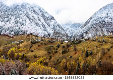 Autumn alpine landscape, alpine village with spectacular gardens and high snowy mountains in background near Bran, Magura, Transylvania, Romania. #1565532025