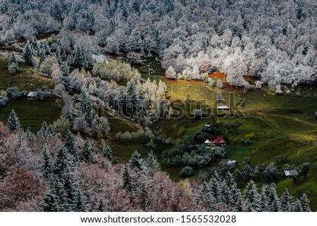 Autumn alpine landscape, alpine village with spectacular gardens and high snowy mountains in background near Bran, Magura, Transylvania, Romania. #1565532028
