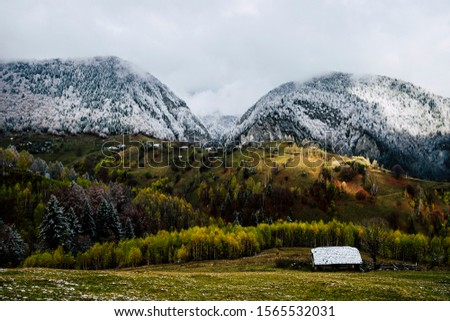 Autumn alpine landscape, alpine village with spectacular gardens and high snowy mountains in background near Bran, Magura, Transylvania, Romania. #1565532031