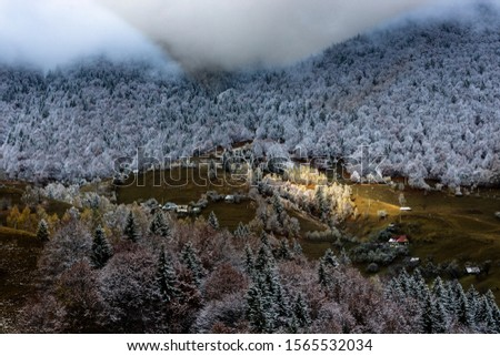 Autumn alpine landscape, alpine village with spectacular gardens and high snowy mountains in background near Bran, Magura, Transylvania, Romania. #1565532034