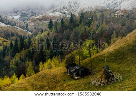 Autumn alpine landscape, alpine village with spectacular gardens and high snowy mountains in background near Bran, Magura, Transylvania, Romania. #1565532040