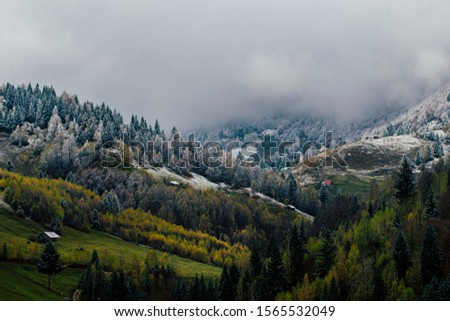 Autumn alpine landscape, alpine village with spectacular gardens and high snowy mountains in background near Bran, Magura, Transylvania, Romania. #1565532049
