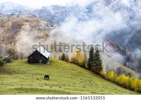 Autumn alpine landscape, alpine village with spectacular gardens and high snowy mountains in background near Bran, Magura, Transylvania, Romania. #1565532055