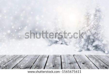 Snowy woodland in wintertime with snowflakes #1565675611