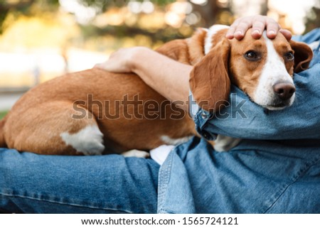Photo of young man in denim clothes sitting on bench in park with his canine dog #1565724121