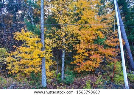 Devils Lake Wisconsin State Park #1565798689