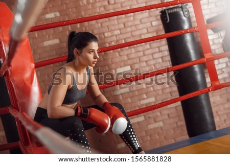 Young woman boxer wearing gloves sitting on chair in the corner of boxing ring leaning forward confident side view #1565881828