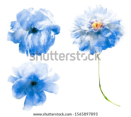 Watercolor flowers , isolated on white background #1565897893
