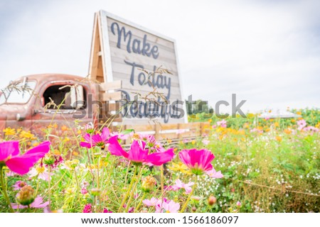"Antique  tractor trailor photography prop on a flower farm field next to wild flowers, with the quote ""make today beautiful."""