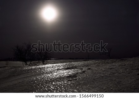Night kind in a field with the moon #1566499150