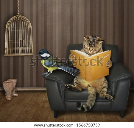 The beige cat in the black leather armchair is reading a book near the open empty bird cage in the living room. There is a tit next to him. #1566750739