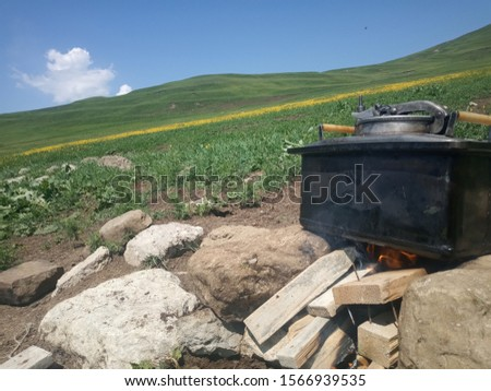 picnic summer outdoors barbecue outdoor recreation #1566939535