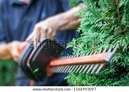 Gardener trimming overgrown green bush by electric hedge clippers. Selective focus, motion blur. Man cutting thuja in garden. Gardening at backyard. Unrecognizable person #1566993097