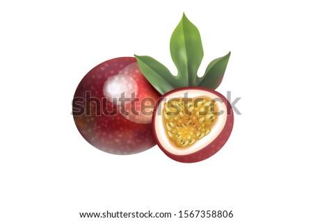Maracuya fruit Whole and slice Passion fruits Vector Illustration #1567358806