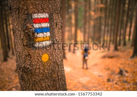 Touristic sign or mark on tree next to touristic path with female tourist in background. Nice autumn scene. Forrest trail. #1567753342