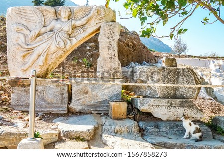 The famous stone carved statue of Nike, the Goddess of Victory, the UNESCO world heritage site of East Roman ruined empire Ephesus, Selcuk, Izmir, Turkey and a Turkish cat #1567858273