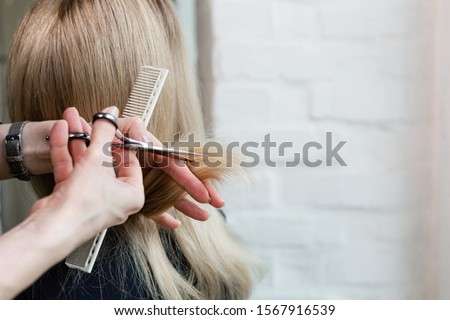 Hairdresser doing haircut. Professional hairdresser scissors, brush on workplace. Professional Hairdresser tools, equipment. Hairdresser service. Beauty salon service. Close up with space for text. #1567916539