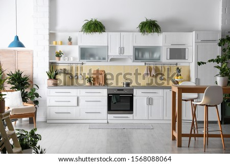 Stylish kitchen interior with green plants. Home decoration #1568088064