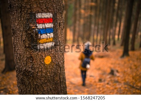 Touristic sign or mark on tree next to touristic path with female tourist in background. Nice autumn scene. Forrest trail. #1568247205