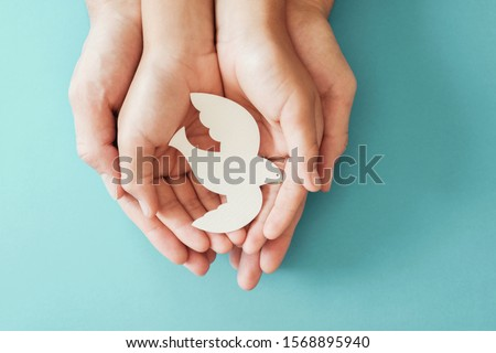 Adult and child hands holding white dove bird on blue background, international day of peace or world peace day concept, sustainable consumption, csr responsible business, animal rights, hope concept Royalty-Free Stock Photo #1568895940