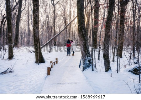 Changchun, Jilin, China - Jan 6, 2019: A couple walking on the snowfield in the forest in winter #1568969617