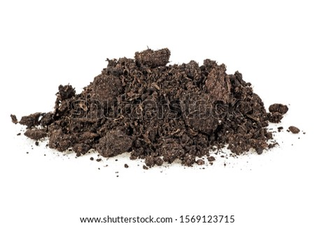 Pile heap of soil humus isolated on white background #1569123715