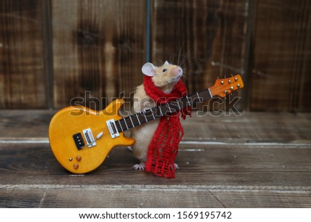 Сute mouse plays guitar, sings. Fun pet fond of music. Talented animal: home musician. Musical mouse celebrate. Mouse rock star on stage gives concert. Postcard with mouse. Talent. Celebration. Song #1569195742